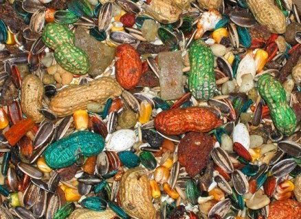 Abba 1500 Parrot Diet - Bird Food