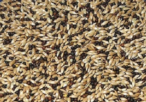 Abba Standard Canary Seed Mix - Canary Food