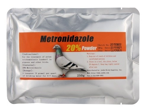 Metronidazole, antiprotozoal bird medication