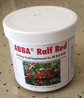 Abba Red Ralf - Canary Supplies - Red Factor Canaries