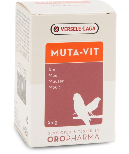Multi-vitamin mix with methionine for better moulting - Pet Bird Supplies